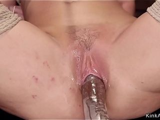 Tied like a hog humungous titties cougar ass-fuck played